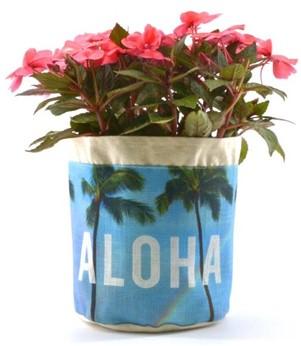 "aloha plant pouch - ""aloha rainbow"""