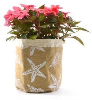"aloha plant pouch - ""starfish"""