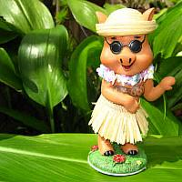 """hula pig with sunglasses"""